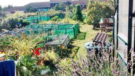 eastern ave allotment site