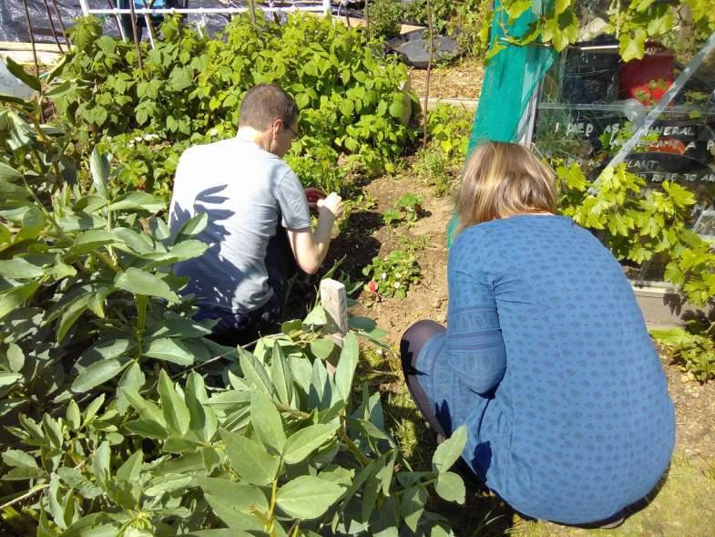 Image Result For Gardening Cafe